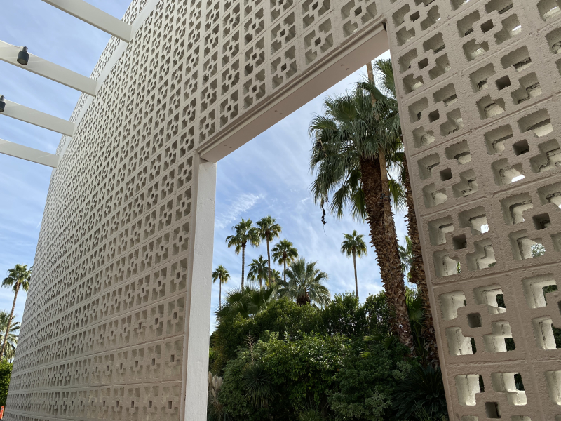 Lace Legos in Palm springs-schafphoto 2019